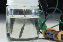 Stanford scientists have developed a low-cost device that uses an ordinary AAA battery to split water into oxygen and hydrogen gas. Gas bubbles are produced by electrodes made of inexpensive nickel and iron.