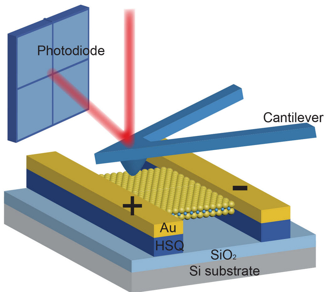 Piezoelectricity in a 2D semiconductor | Kurzweil