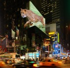 Billboards of the future could show astonishing 3D effects - due to a new technology developed in Austria. (Credit: TriLite)