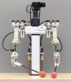 A hybrid hydrostatic transmission and human-safe haptic telepresence robot (credit: Disney Research)