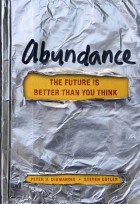 Abundance book cover large