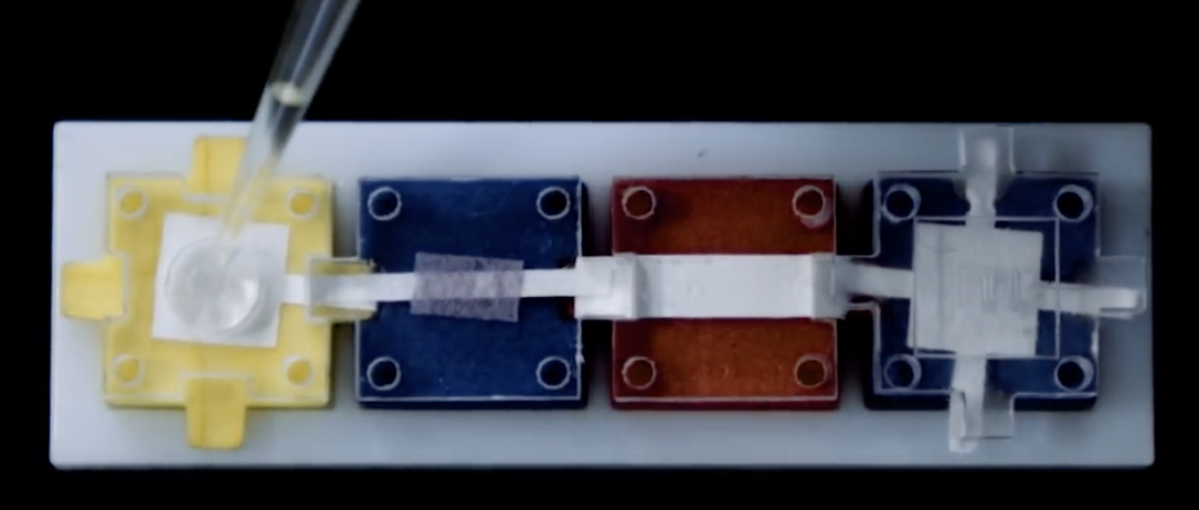 MIT's modular plug-and-play blocks allow for building