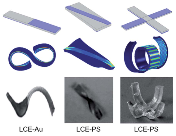 A biocompatible shape-changing material controlled by patterns and heat | Kurzweil