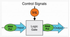 Three-terminal transcriptor-based gates use integrase (Int) control signals to modulate RNA polymerase flow between a separate gate input and output (credit: Bonnet et al./Science)