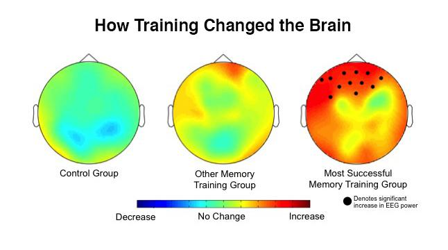 Leading brain-training game improves memory and attention better than competing method