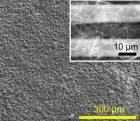 SEM image showing C60 fullerene nanorod photoconductor fabricated by depositing C60 nanorod film onto pre-patterned gold electrodes. Inset: SEM image showing C60 nanorods bridging 10-micron-wide electrodes. (Credit: Rinku Saran et al./Scientific Reports)