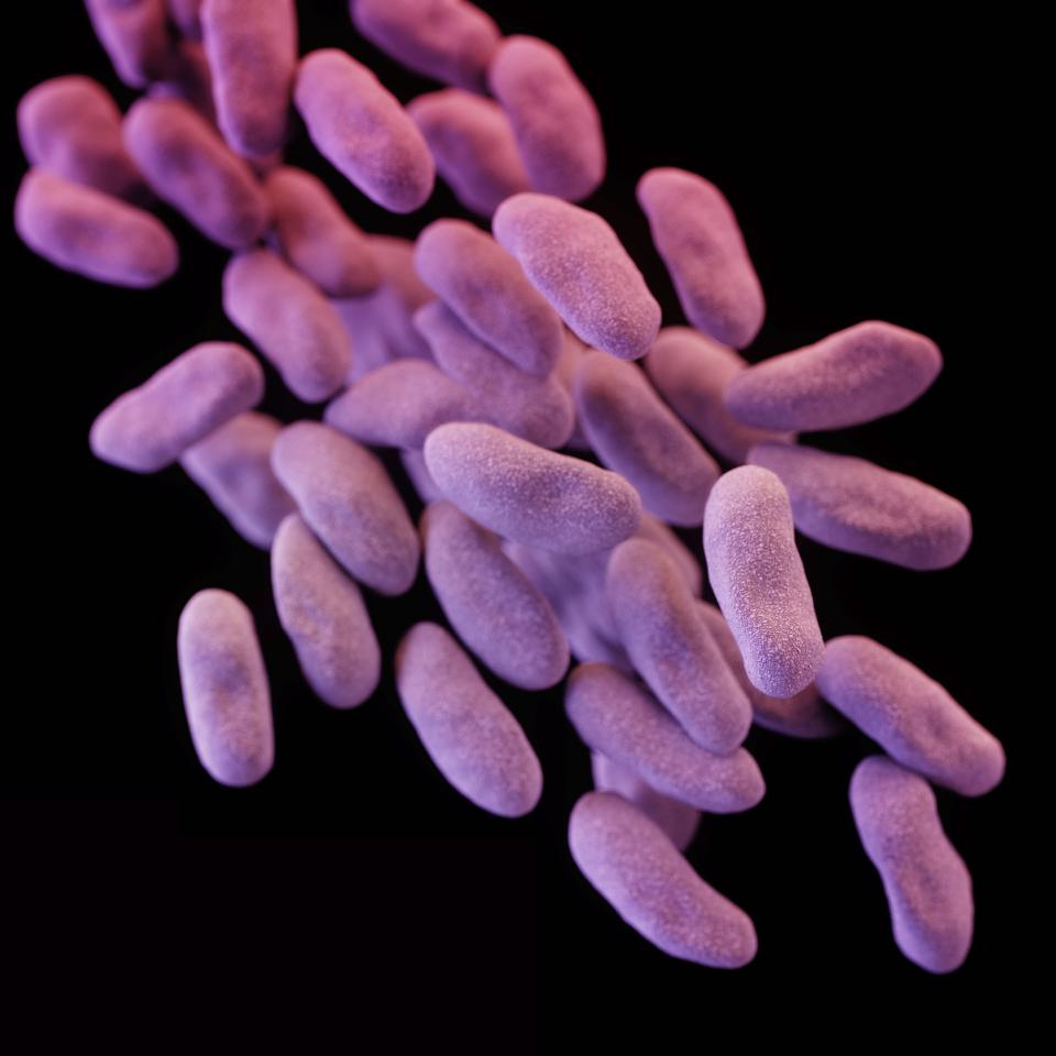 Woman dies from antibiotic-resistant bacteria when no antibiotics worked