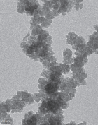 Transmission electron micrograph of cobalt oxygen nanoparticles