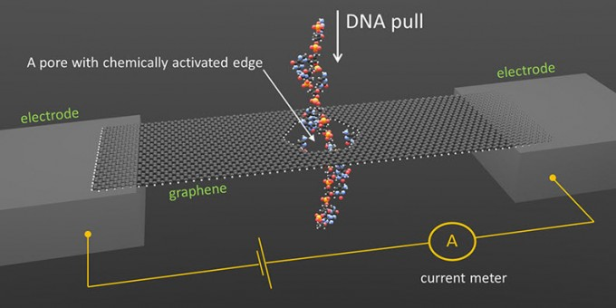 NIST concept for DNA sequencing through a graphene nanopore (credit: Smolyanitsky/NIST)