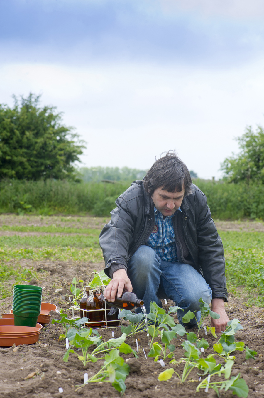 Dr Philip Stone from The University of Nottingham tending to the plants undergoing the atmospheric nitrogen fixation trials