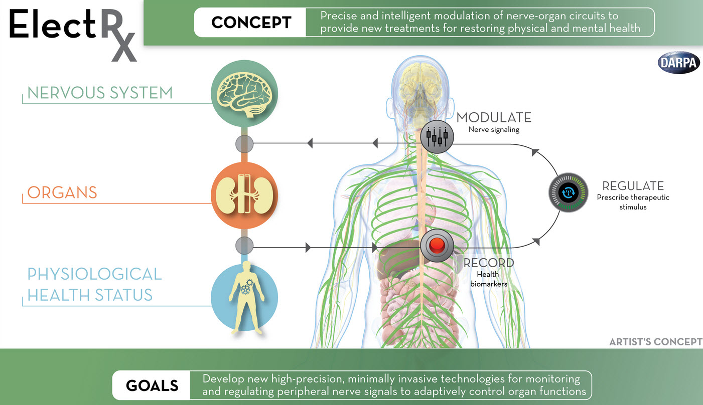 Technology Motherboards 342528 additionally Digital Load Cell Wiring Diagram together with Electrical additionally Elecsysworks 5 also Darpa Explores Neuromodulation Of Organ Functions To Help The Human Body Heal Itself. on free electrical projects circuits for s