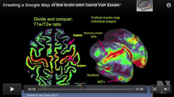 Creating A Google Map Of The Brain With David Van Essen Kurzweil