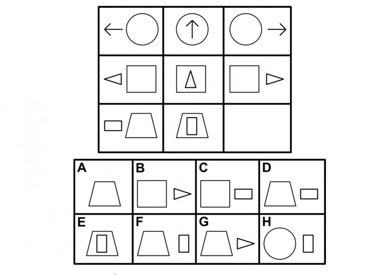 AI system performs better than 75 percent of American adults on standard visual intelligence test