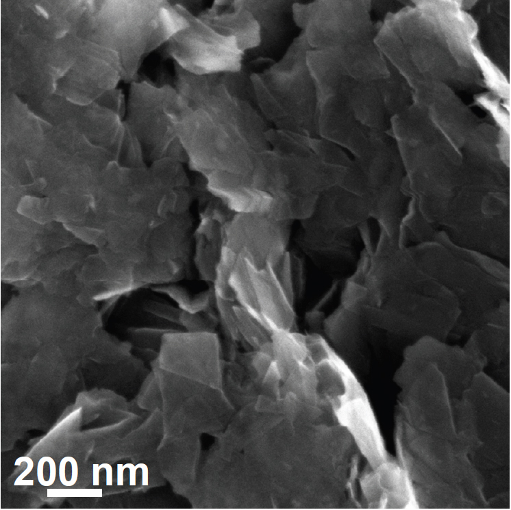 Jin_MoS2_catalysis_Figure3a_Metallic_MoS2_Nanosheets_on_Graphite_SEM