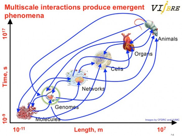 Multiscale Interactions