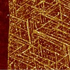 This is a top view of GrBP5 nanowires on a 2-D surface of graphene. (credit: Mehmet Sarikaya/Scientific Reports)