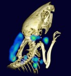 Non-invasive PET imaging-ft