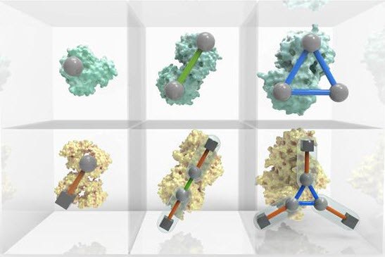 An interactive Periodic Table of Protein Complexes is available at http://sea31.user.srcf.net/periodictable/ (credit: EMBL-EBI / Spencer Phillips)