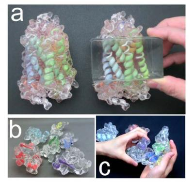 Soft and transparent protein models