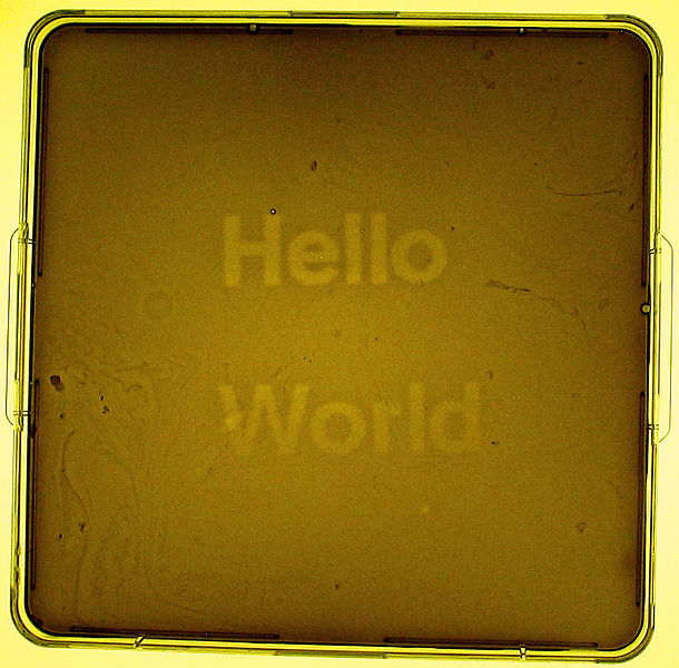 SynBioHelloWorld
