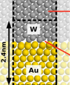 The total conductance per unit area is similar for both tungsten (W) and gold (Au). However, by joining the two highly conducting metals, one finds a conductance density that is about 4 times lower of either material individually. (Credit: David J. Olivera et al./PNAS)
