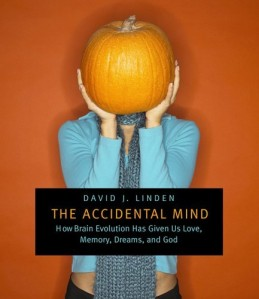 Accidental Mind book cover