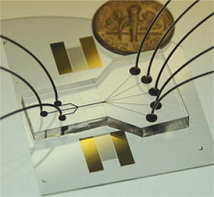 acoustic_cell_sorting_chip
