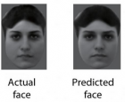 actual vs predicted face ft