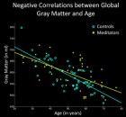 Negative correlations between global gray matter and age. The X-axis displays the chronological age (in years); the Y-axis displays the global gray matter volume (in ml). Note the less steep slope of the regression line in meditators (yellow) compared to controls (cyan). (Credit: Frontiers in Psychology)