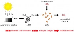 Artificial photosynthesis used to produce re