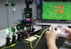 biotic game with controller