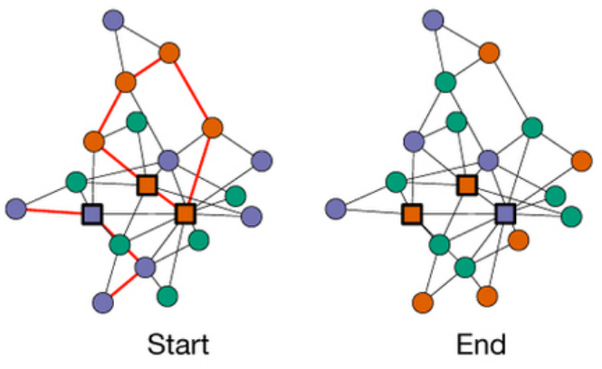 "The game results show that placing slightly ""noisy"" bots in a central location (high-degree nodes) improve human coordination by reducing same-color neighbor nodes. Square nodes show the bots and round nodes show human players; red edges show color conflicts, which are reduced with bot participation. (credit: Hirokazu Shirado and Nicholas A. Christakis/Nature)"
