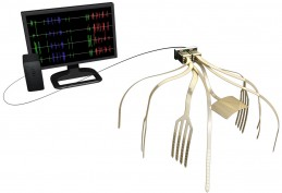Lawrence Livermore National Laboratory is developing a neural measurement and manipulation system -- an advanced electronics system to monitor and modulate neurons -- that will be packed with more than 1,000 tiny electrodes embedded in different areas of the brain to record and stimulate neural circuitry (credit: LLNL)