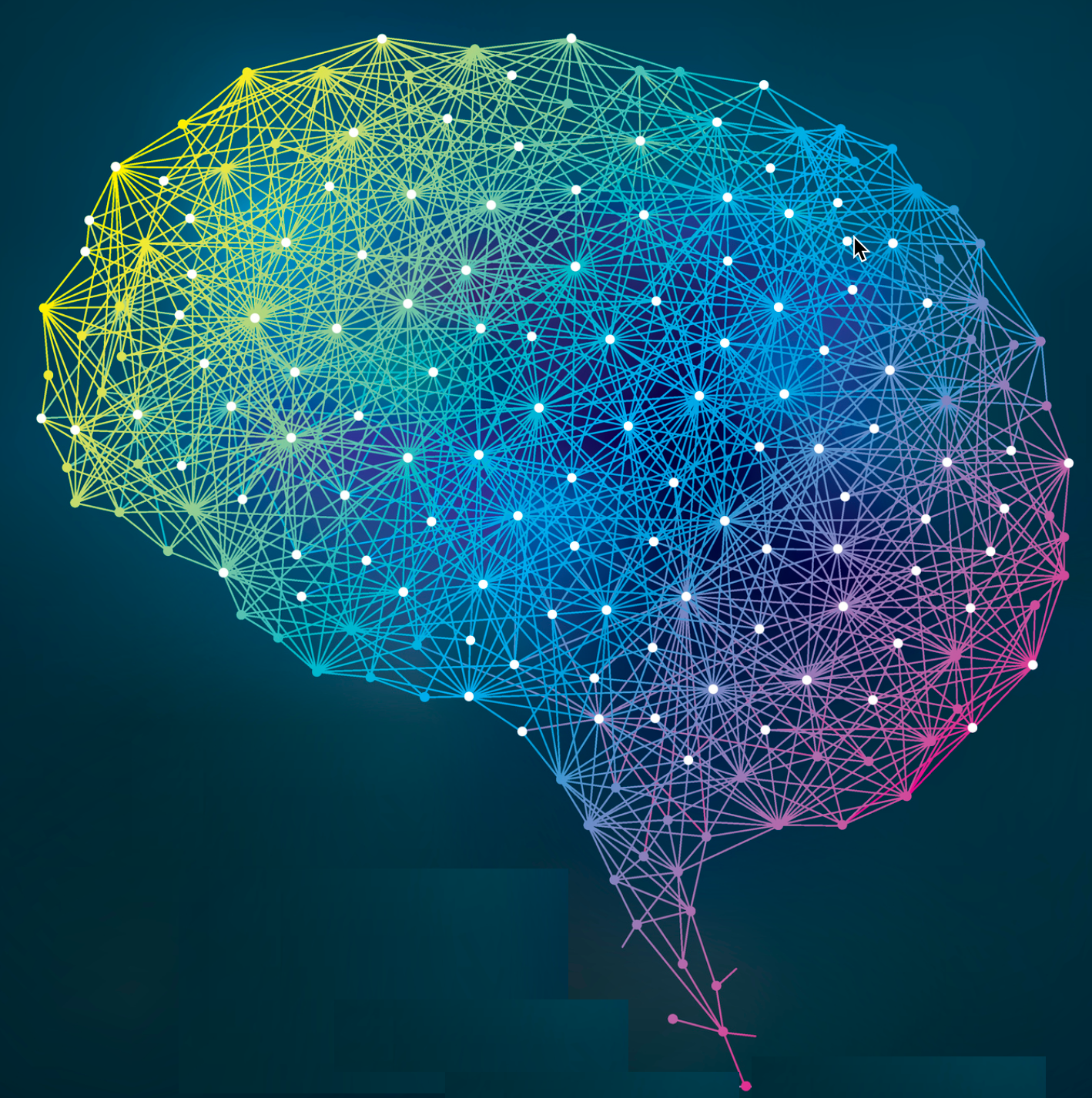 new algorithm will allow for simulating neural connections of entire