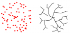 Target points (red) are distributed in a spherical volume V and connected to optimize wiring to a tree (black) with total length L  (credit: H. Cuntz et al./PNAS)