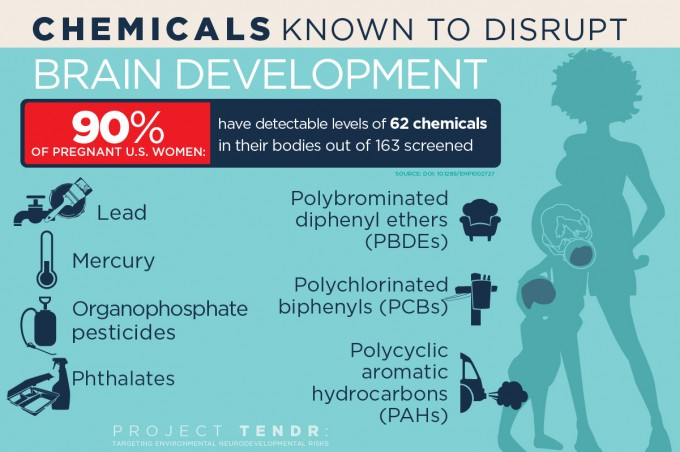 In addition to mercury and lead, flame retardants, air pollutants and chemicals found in many plastics, cosmetics and food containers can disrupt child brain development, researchers say. (credit: Graphic by Julie McMahon)