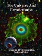 Consciousness in the Universe book cover