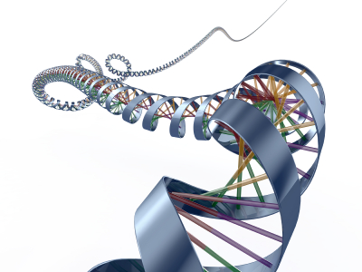 Cancer risk linked to DNA 'wormholes' | Kurzweil