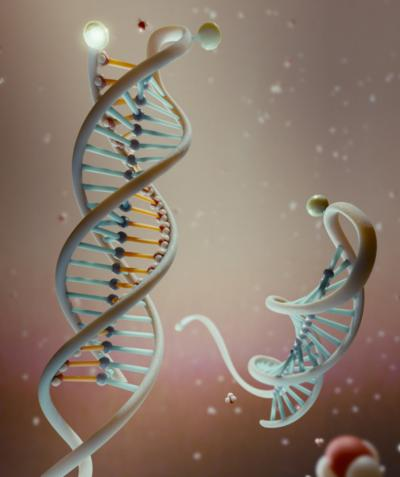 dna_nanosensor