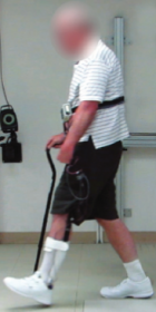 gait-assist system ft