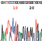 genome sequence trace - featured