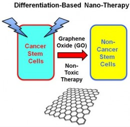 Graphene oxide targeting cancer stem cells with differentiation-based nano-therapy (credit: Marco Fiorillo et al./Oncotarget)