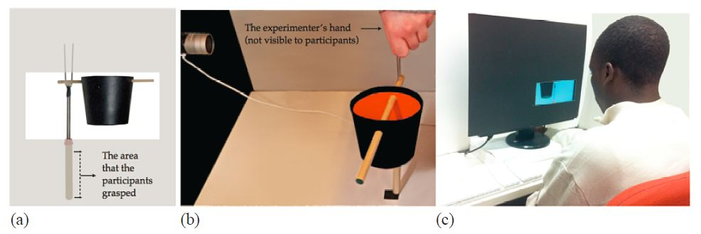 haptic_torque_perception
