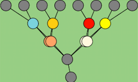 heirarchical network ft