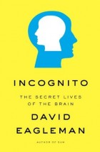 Incognito book cover
