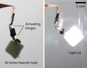 "A ""mini arm"" made by two hinges of actuating nickel hydroxide-oxyhydroxide material (left) can lift an object 50 times of its weight when triggered (right) by light or electricity. (credit: University of Hong Kong)"
