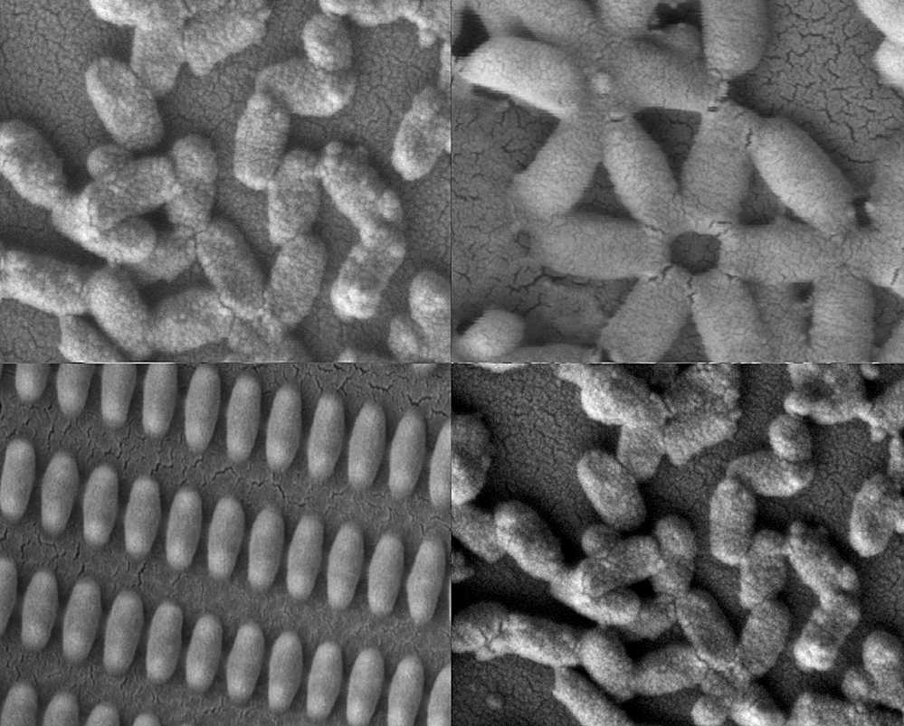 mit_coated_nanoparticles