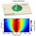 mit_excitons