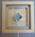 multi-neuron chip