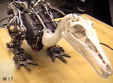 Troody, a robot<br /> dinosaur built at MIT